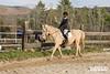 Equestrian Show 2020_009