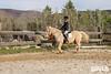 Equestrian Show 2020_013