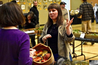 Nicole Gorko of the Humboldt Mycological Society talks to a mushroom lover about amanita muscaria, commonly known as the fly agaric or fly amanita. The mushroom, often depicted in children stories with gnomes and fairies, are highly poisonous.