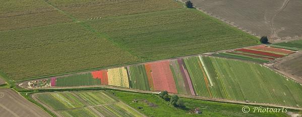 """Half Painted Fields"""