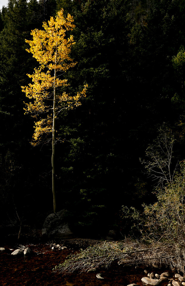 Leaf Peeping Fall Colors