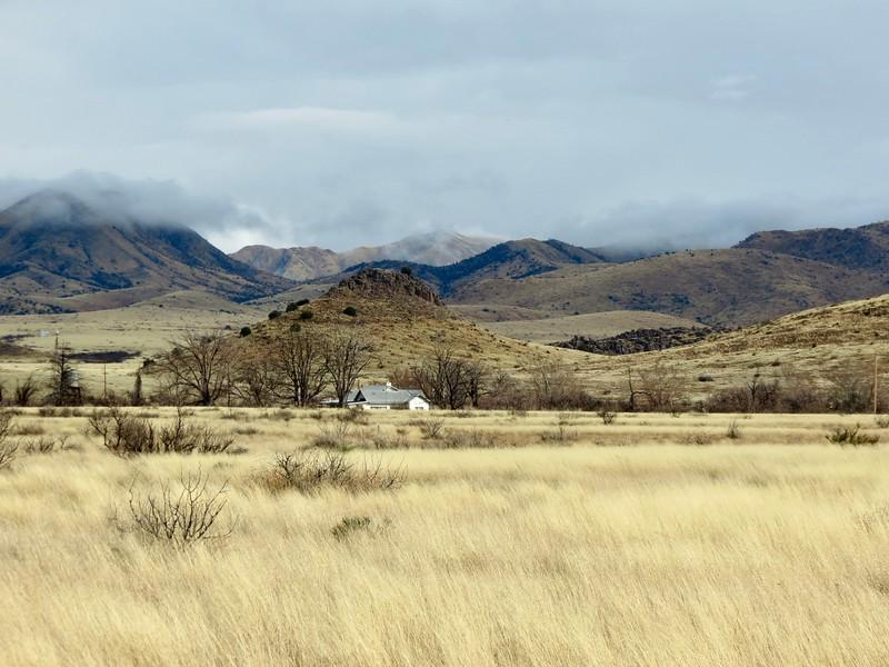Quiet Prairie