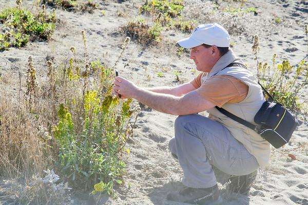 Photos: BioBlitz participants use phone app to document dunes life