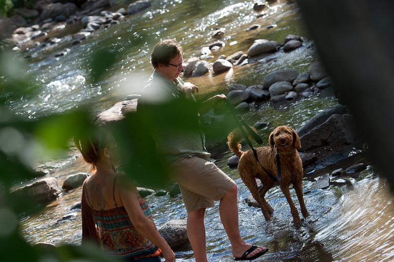 "Bob Kuhn walks his girlfriend's dog, Ralphie, in Boulder Creek during the Hometown Fair in Central Park on Saturday. <br /> More photos:  <a href=""http://www.dailycamera.com"">http://www.dailycamera.com</a><br /> (Autumn Parry/Staff Photographer)<br /> September 3, 2016"