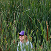 """Kristan Pritz, open space and trails coordinator, searches for trash among the cattails near Le Gault Reservoir during a community clean up, as part of Volunteer Week, in Broomfield on Saturday. <br /> More photos:  <a href=""""http://www.dailycamera.com"""">http://www.dailycamera.com</a><br /> (Autumn Parry/Staff Photographer)<br /> August 6, 2016"""