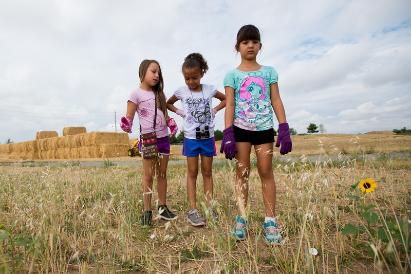 "From left to right, Corina Ledbetter, 7, Brielle Ryan, 7, and Gianna Partida, 7, search for trash during a community cleanup, as part of Volunteer Week, in Broomfield on Saturday.  <br /> More photos:  <a href=""http://www.dailycamera.com"">http://www.dailycamera.com</a><br /> (Autumn Parry/Staff Photographer)<br /> August 6, 2016"