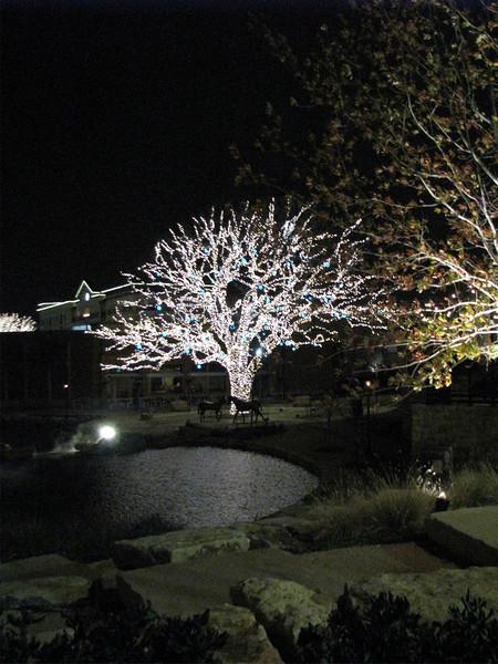 Christmas Lights 08
