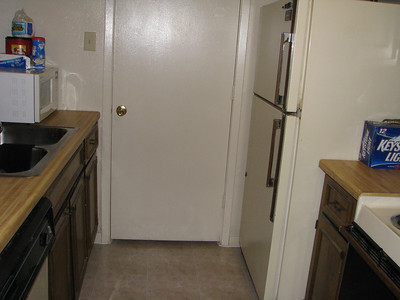 More kitchen, the door leads to a laundry room.