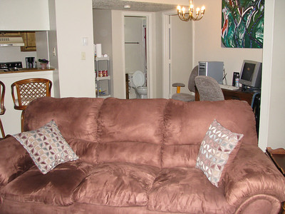 Our new couch!