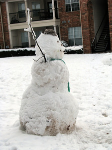 A snowman that our neighbor made early in the morning.