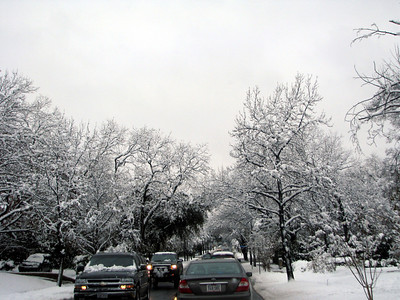 Highland park is super pretty with all the snow