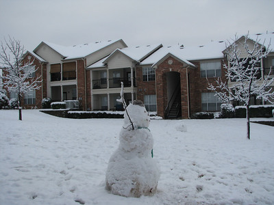 It snowed one January day in Dallas, Texas!