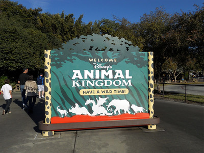 We spent about a day and a half at the Animal Kingdom. It is such a neat place with so much to do!