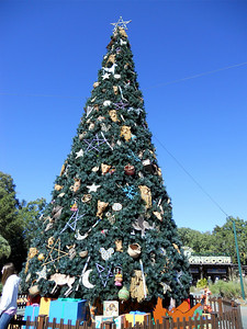 The Christmas tree at this park was decorated with various animal faces and stars and moons. It was my favorite day-time tree.