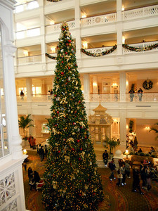 Their tall beautiful Christmas tree!