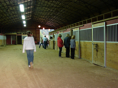 Guests visit the horse barn and greet the residents.