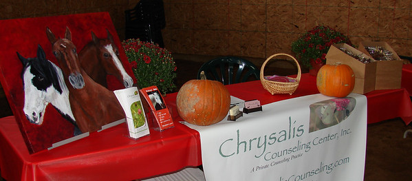 Chrysalis Counseling Center counsels people in the presence of New Beginnings horses. Horses are known to demonstrate empathy toward human emotions and behaviors. This unique therapy involves completing activities while working with horses (not riding them).  This concept was used in the Sandra Bullock movie 28 Days.  http://www.chrysaliscounseling.com/index.html