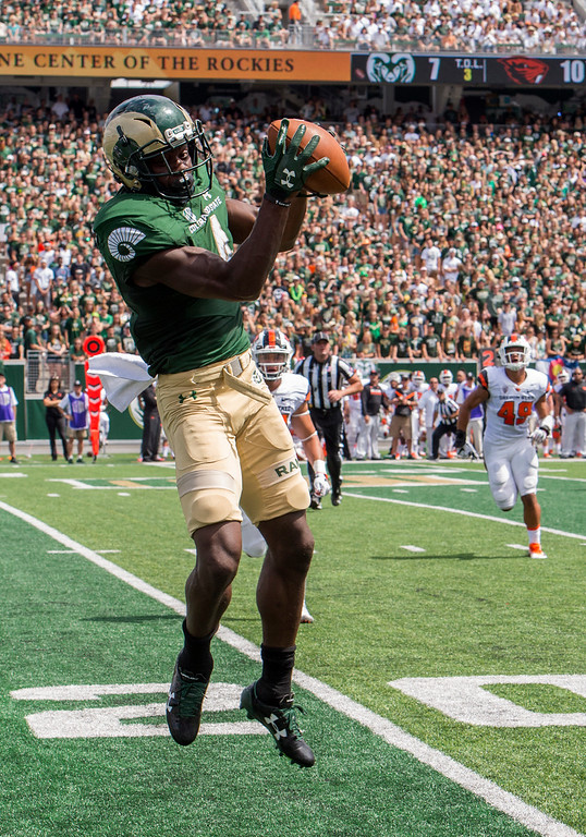 . Colorado State wide receiver Michael Gallup (4) catches a downfield pass against Oregon State Saturday afternoon August 26, 2017 during the Ram\'s inaugural football game at the new on-stadium in Fort Collins. (Michael Brian/For the Reporter-Herald)
