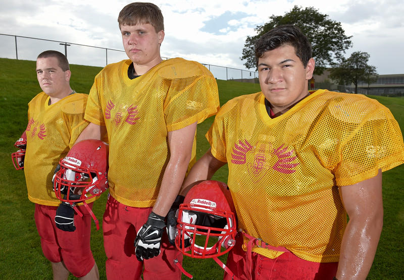 SKYLINE FOOTBALL PREVIEW