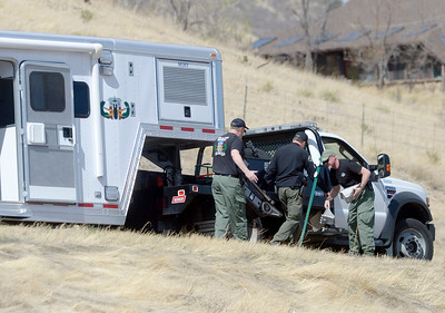 Photos: Foothills Highway standoff