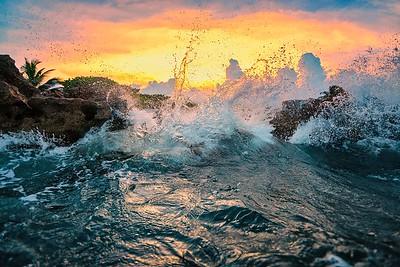 DSC06923, for cara David Scarola Photography, Coral Cove Beach, Jupiter Florida, sep 2017