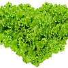 Earth day, Heart symbol in green leaves on isolated