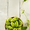 hop cones on wood