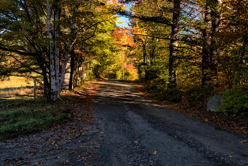 Country Autumn Road