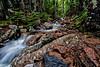 Maple Spring Brook