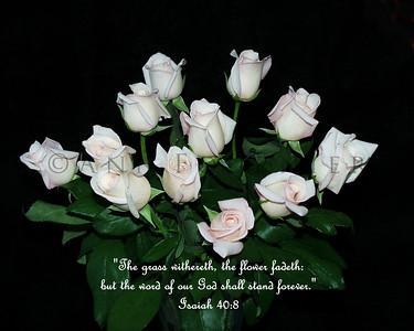 Isaiah 40:8 (KJV)