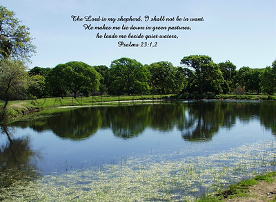 Psalm 23:1, 2 (NIV), Rockville Park, California.  Once a beautiful pond, but now is no more.
