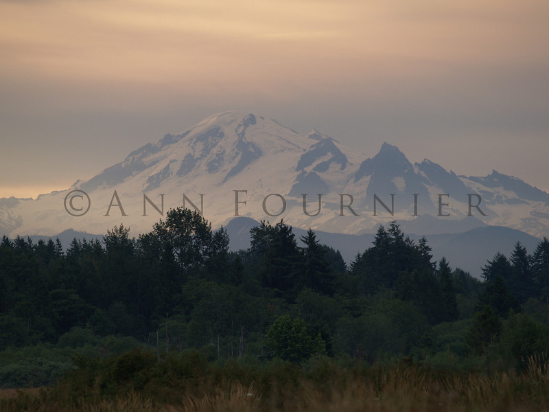 WA03_P7220784 - Mt. Baker, Washington.