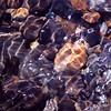 Soft Stones Submerged
