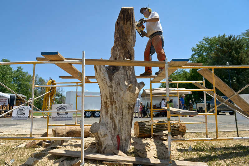 CHAINSAW CARVING CONTEST