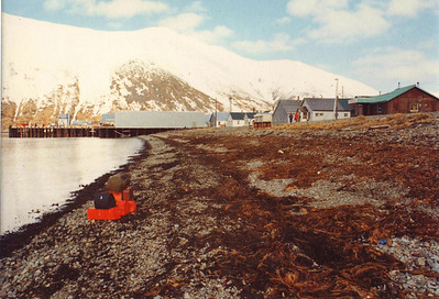 King Cove.  Back in those days, working for the State of Alaska and carrying their toolboxes to villages all over the state, I painted them all fluorescent orange so they would stand out on a remote airstrip.  The baggage handlers working for Wein Air Alaska or Reeve Aleutian Airways all groaned when they spotted these headed their way.