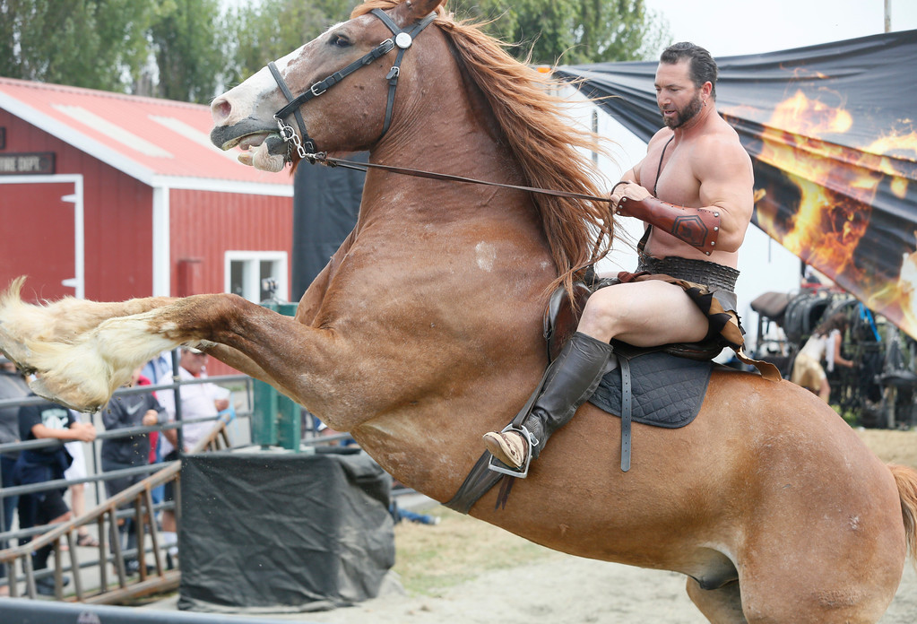 ". Shaun Walker � The Times-Standard  Gladius leader Erik Martonovich performs with one of his Belgian draft horses at the Humboldt County Fair in Ferndale on Friday. ""Gladius the Show\"", starting at 1, 3, and 5 p.m. today and tomorrow and each show being different, is an acrobatic equestrian production loosely based on mythology and gladiators. For more information, go to gladiustheshow.net."