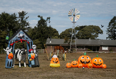 Inflatable characters and structures and an omnipresent  metal cow sit on two adjacent properties on Herrick Avenue not far from Highway 101 on Friday. (Shaun Walker -- The Times-Standard)