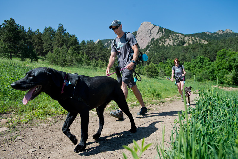 "Co-founders Stephen Hillen and Kath Allen walk with Henry and LuLu during a hike at  Chautauqua Park on Friday. Hike Doggie, the new Golden-based dog hiking service, has expanded to Boulder.<br /> More photos:  <a href=""http://www.dailycamera.com"">http://www.dailycamera.com</a><br /> (Autumn Parry/Staff Photographer)<br /> June 17, 2016"