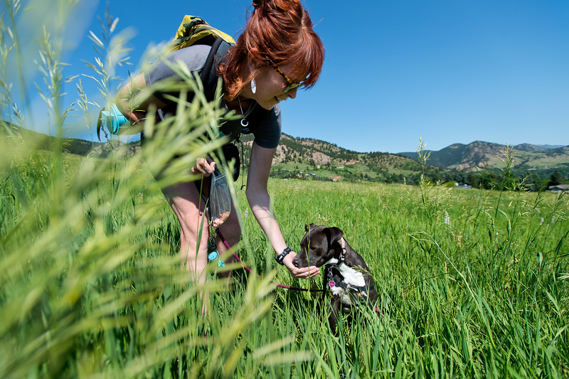 "Co-founder Kath Allen feeds a treat to LuLu, a terrier mix, during a hike at  Chautauqua Park on Friday. Hike Doggie, the new Golden-based dog hiking service, has expanded to Boulder.<br /> More photos:  <a href=""http://www.dailycamera.com"">http://www.dailycamera.com</a><br /> (Autumn Parry/Staff Photographer)<br /> June 17, 2016"