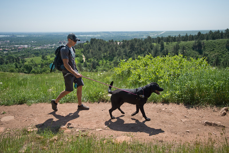 "Stephen Hillen, co-founder of Hike Doggie, hikes with Henry, a black lab, at Chautauqua Park on Friday. Hike Doggie, the new Golden-based dog hiking service, has expanded to Boulder.<br /> More photos:  <a href=""http://www.dailycamera.com"">http://www.dailycamera.com</a><br /> (Autumn Parry/Staff Photographer)<br /> June 17, 2016"