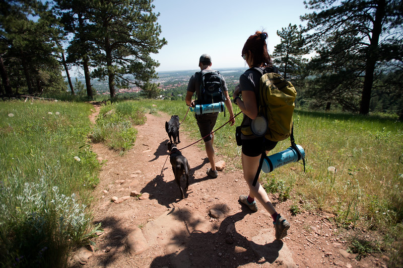 "Stephen Hillen and Kath Allen, co-founders of Hike Doggie, walk with Henry and LuLu along the trail at Chautauqua Park on Friday. Hike Doggie, the new Golden-based dog hiking service, has expanded to Boulder.<br /> More photos:  <a href=""http://www.dailycamera.com"">http://www.dailycamera.com</a><br /> (Autumn Parry/Staff Photographer)<br /> June 17, 2016"