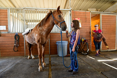 Photos: Horseless Horse 4-H Project