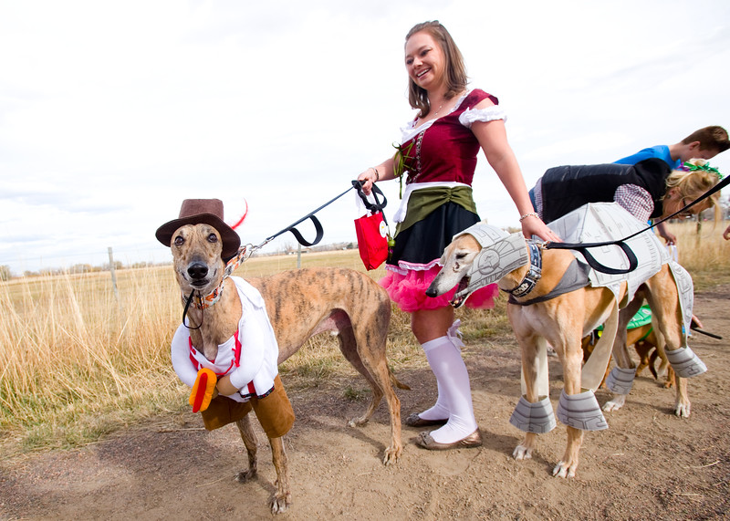 """Brisket and Bones attend the """"Howl-o-ween"""" event in full costumes, at Cherryvale Trailhead in Boulder on Sunday. <br /> More photos:  <a href=""""http://www.dailycamera.com"""">http://www.dailycamera.com</a><br /> (Autumn Parry/Staff Photographer)<br /> October 30, 2016"""