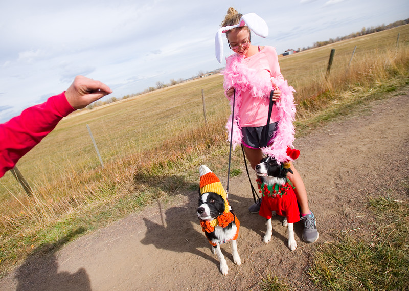 """Deb Darnell holds up treats for Missy Darnell's dogs during the """"Howl-o-ween"""" event held by the City of Boulder's Open Space and Mountain Parks Department at Cherryvale Trailhead in Boulder on Sunday. <br /> More photos:  <a href=""""http://www.dailycamera.com"""">http://www.dailycamera.com</a><br /> (Autumn Parry/Staff Photographer)<br /> October 30, 2016"""
