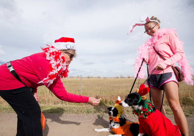 """Deb Darnell gives treats to Missy Darnell's dogs during the """"Howl-o-ween"""" event held by the City of Boulder's Open Space and Mountain Parks Department at Cherryvale Trailhead in Boulder on Sunday. <br /> More photos:  <a href=""""http://www.dailycamera.com"""">http://www.dailycamera.com</a><br /> (Autumn Parry/Staff Photographer)<br /> October 30, 2016"""