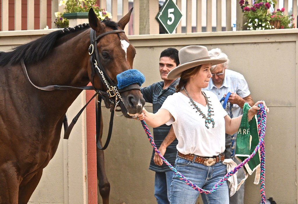 . One of eight marathon runners is readied for her jockey. José Quezada�For Times-Standard