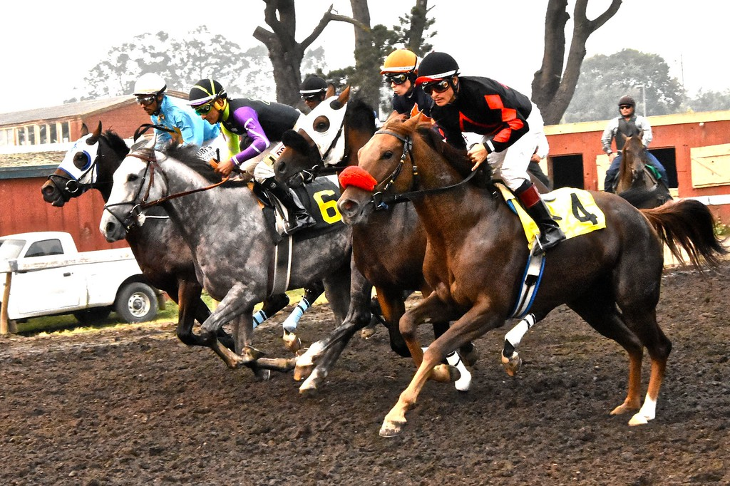 . Joe Crispin, riding #6 Noble Nick eventually won the one and five eighths mile  CJ Hindley Humboldt Marathon. José Quezada�For Times-Standard
