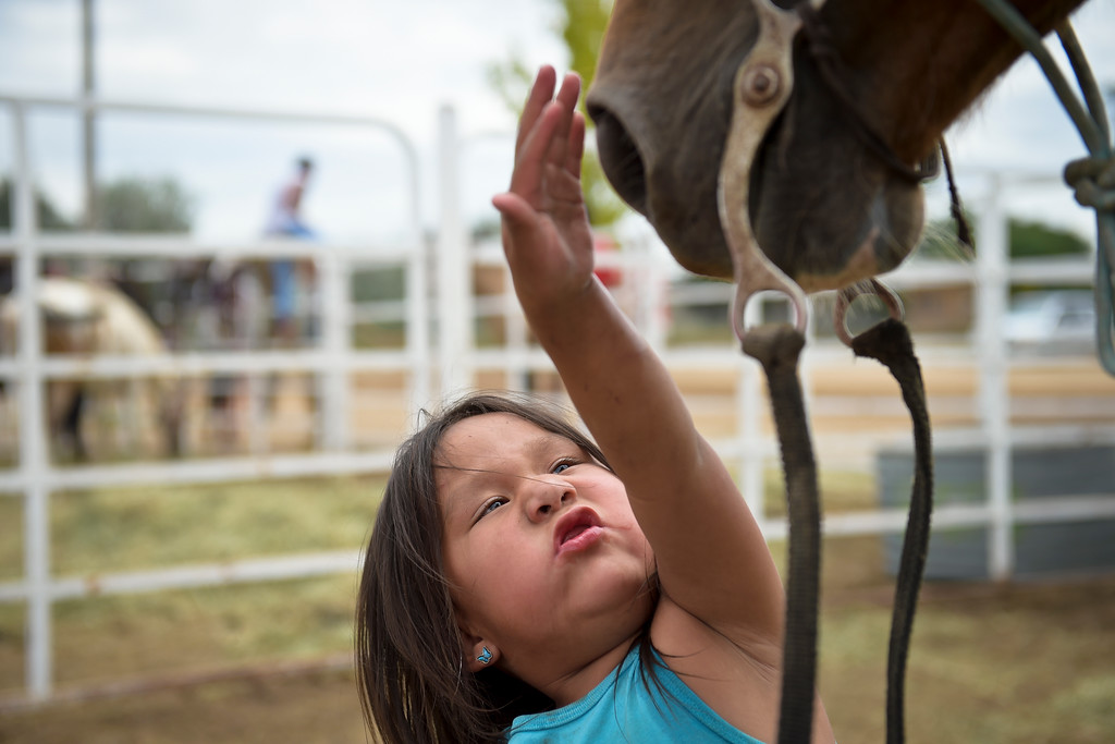 . Autumn Belt, 3, pets one of her father\'s horses at the Boulder County Fairgrounds Tuesday. The horse is one of about a dozen taking part in the Lakota Ride 2017 which is a 400-mile ride raising money and awareness for families living on the Pine Ridge Reservation in South Dakota. It is expected to end at the reservation in mid August. To view more photos and a video visit timescall.com. Lewis Geyer/Staff Photographer July 25, 2017