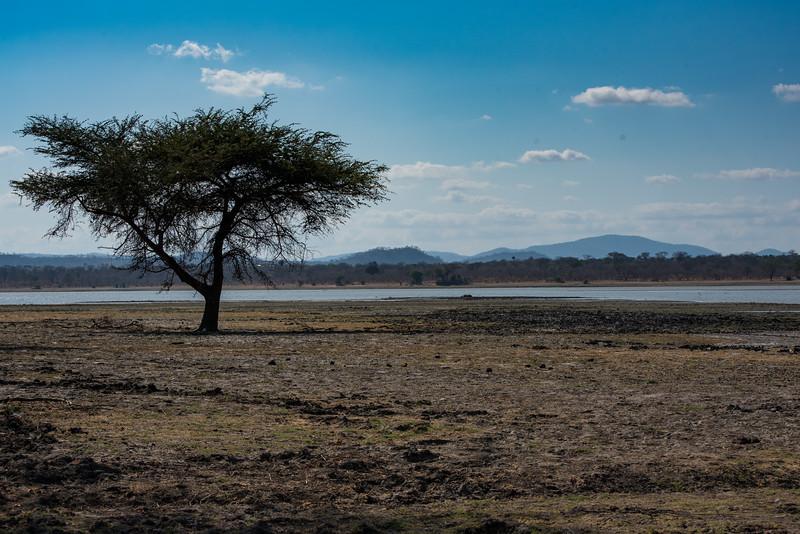 Lakeside, Vwaza Marsh Wildlife Reserve