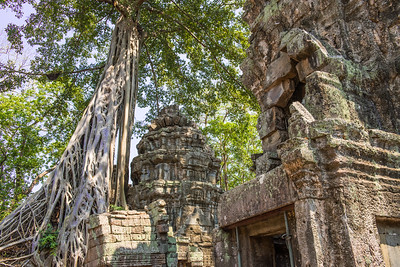 Angkor Phrom Temple, Siem Reap, Cambodia